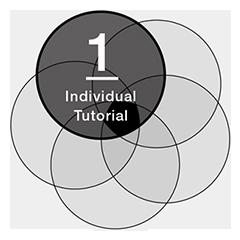 Individual Tutorial
